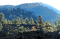 SUNSET CRATER NORTH OF FLAGSTAFF AZ