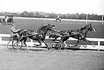 Oakland Section of Pittsburgh:  View of the trotters racing at the Schenley Park Oval - 1924.  The racing images are special due to the skill needed to capture the moving trotter with the equipment and film available at this time.