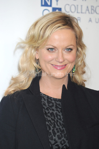 NEW YORK, NY - OCTOBER 13: Amy Poehler at Comedy Central's night of too many stars: America comes together for autism programs at The Beacon Theatre on October 13, 2012 in New York City.. Credit: Dennis Van Tine/MediaPunch