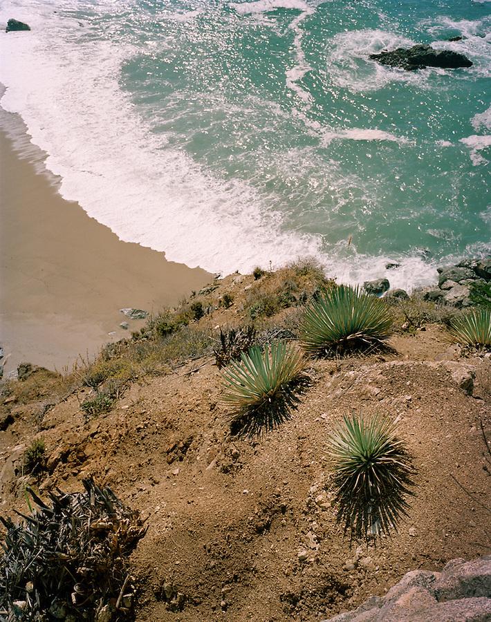 Julia Pfeiffer Burns State Park, Big Sur,California, CA, USA