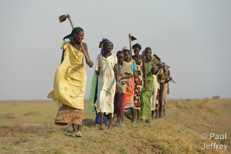After working together in a community garden, Adhieu Deng Ngewei and her neighbors sing and dance as they walk home on April 12, 2017, atop a dyke they constructed to control flooding around Dong Boma, a Dinka village in South Sudan's Jonglei State. Most of the women's families recently returned home after being displaced by rebel soldiers in December, 2013, and they face serious challenges in rebuilding their village while simultaneously coping with a drought which has devastated their cattle herds.<br /> <br /> The Lutheran World Federation, a member of the ACT Alliance, is helping villagers restart their lives with support for housing, livelihood, and food security.