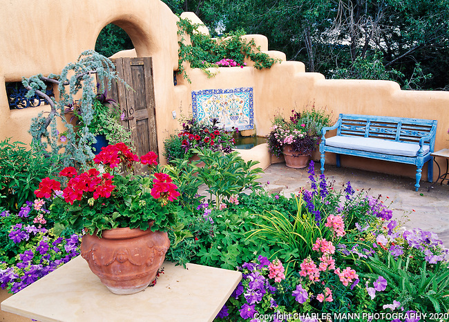 Susan Blevins of Taos, New Mexico, created an elaborate home garden featuring containers, perennial beds, a Japanese themed path and a regional style that reflects the Spanish and pueblo architecture of the area. The patio is enhanced with a blue bench and colorfully planted containers.