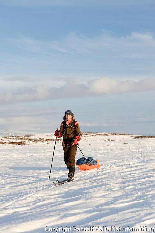 Jente trekker pulk i delvis bart vårlandskap ---- Girl pulling sled. Snow partly gone from the ground.