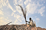 John Lago puts a thatched roof on his hut in Pisak, a small village in Central Equatoria State in Southern Sudan.