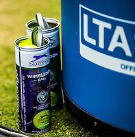 AMBIENCE<br /> TENNIS - AEGON CHAMPIONSHIPS -  2015 -  QUEENS CLUB - LONDON -  ATP 500- 2015  - ENGLAND - UNITED KINGDOM<br /> <br /> &copy; AMN IMAGES