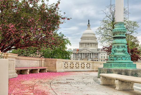 United States Capitol Building Washington DC