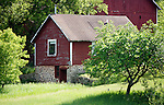 A collection of Barns that still can be seen while traveling the countryside in  the beautiful State of Wisconsin.<br /> Waushara County- Potato Cellar 1/4 mile east of intersection of County Hwy A and 15th Rd.