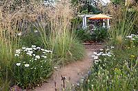 Barbata - Summer-Dry Backyard Meadow