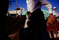 """Brazoria County Fair manager Anita Rogers confesses that the midway """"probably brings more people through the gate than any other single attraction."""" But Texans will still turn out for dashing riders, whether they are rodeo professionals or equestrian showmanship competitors like these."""