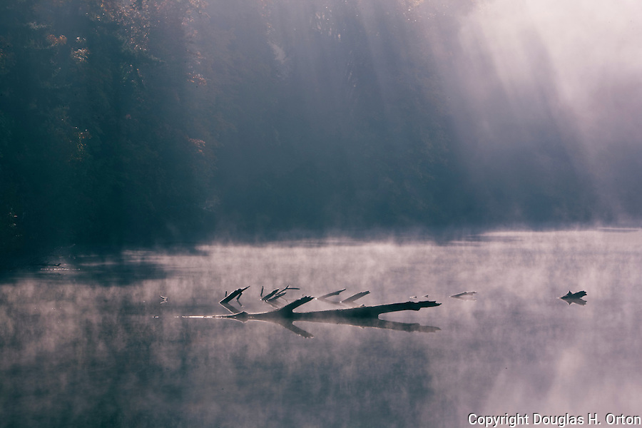 Mist rises off lake in warmth of early fall sun king county
