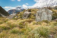 Alpine scene in Aoraki Mount Cook National Park, Mackenzie Country, UNESCO World Heritage Area, South Island, New Zealand