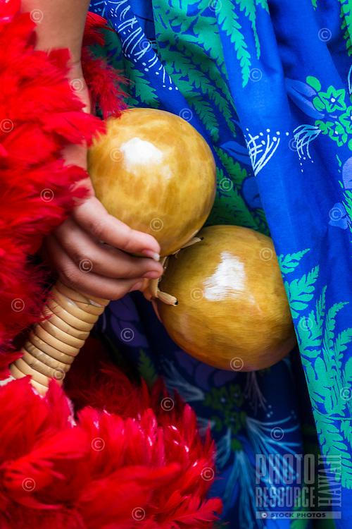A girl wearing a blue hula skirt holds 'uli'uli (feathered gourd rattles) before a hula performance, Hale'iwa, O'ahu.