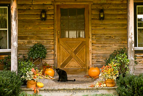 Front porch of rustic wooden house with black cat and decorated with pumpkins and decorated for fall and Halloween