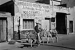 Mazatlan Mexico, man riding donkeys into town.