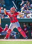 14 March 2014: Washington Nationals catcher Sandy Leon in action during a Spring Training game against the Detroit Tigers at Joker Marchant Stadium in Lakeland, Florida. The Tigers defeated the Nationals 12-6 in Grapefruit League play. Mandatory Credit: Ed Wolfstein Photo *** RAW (NEF) Image File Available ***
