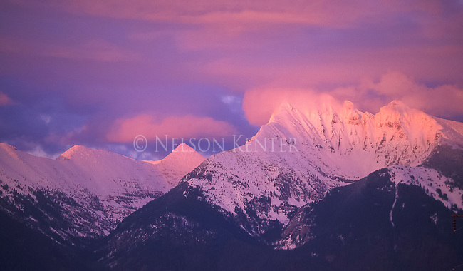Pink sunset color on the peaks of the Mission Mountains rising into the clouds