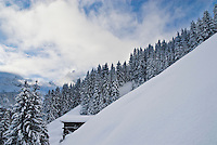 Snow covered mountains and forest in Swiss Alps, Gimmelwald
