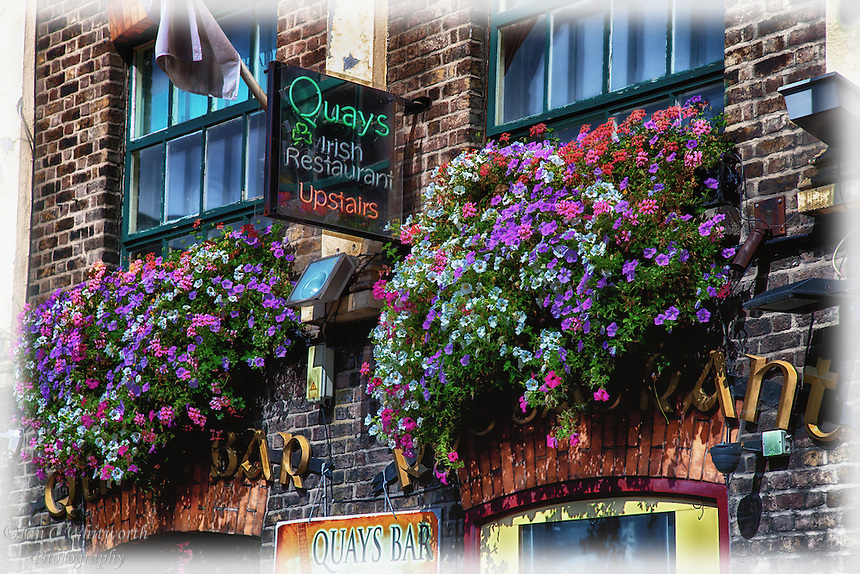 Looking up at the beautiful flowers at an Irish restaurant in the city of Dublin.