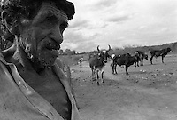 Sertanejo, inlander, dweller of the Northeast Brazil back country herds cattle, Paraiba State Sertão, Brazil.