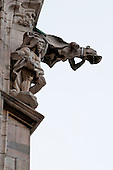 Milan, Italy, Duomo Cathedral. Weird stone gargoyle - looks like a caped dog.
