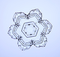 Snowflake with a platelet crystal form, made in a cloud when water freezes at negative fifteen degrees Celsius. When crystallization occurs slowly, in calm air and in temperatures near the freezing point, snowflakes will exhibit hexagonal symmetry.