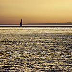 sailing the solent on a summers evening