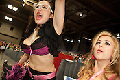 Fans of Hellcats cheer their team during a bout against Putas del Fuego at the Palmer Events Center in Austin, Texas.