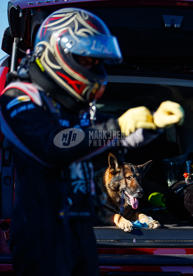 Mar 17, 2017; Gainesville , FL, USA; Udo, the dog of team owner Jim Head looks on as NHRA funny car driver Jonnie Lindberg gets ready to race during qualifying for the Gatornationals at Gainesville Raceway. Mandatory Credit: Mark J. Rebilas-USA TODAY Sports