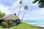 2016 - LOST IN TAHITI - MOOREA - FRENCH POLYNESIA