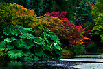 The start of autumn's colors at Van Dusen Botanical Garden.