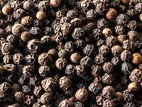 Black pepper corns stock photos