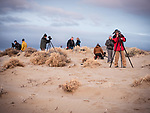 Morning on the Dunes with Moose Peterson at 0-darkthirty during Shooting the West XXIX, Winnemucca, Nevada, The Nevada Photography Experience<br /> <br /> <br /> <br /> <br /> <br /> <br /> #WinnemuccaNevada, #ShootingTheWest, #TheNevada