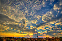 Western Sunset - Arizona