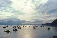 Purse seine, commercial fishing, Prince William Sound, Bay of Valdez, Alaska