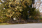 As winter approaches, Horton Vineyards has moved the picnic tables from their front yard area to a side area.