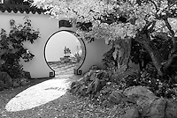 Sunlight is seen through the keyhole doorway into the scholar's courtyard with rocks and Japanese Maple trees in Fall.  This black & white photo is in the Lan Su Chinese Garden in Portland, Oregon.