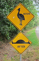 QZ2494-D. A speed bump sign, below, has been modified by concerned citizens, who have also added the top sign. These urge drivers to slow down to prevent hitting the cassowary birds crossing the road. A giant, flightless, dangerous, endangered bird, another of Australia's animal oddities. Daintree National Park, Queensland, Australia.<br /> Photo Copyright &copy; Brandon Cole. All rights reserved worldwide.  www.brandoncole.com