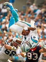 Carolina Panthers 2015-2016