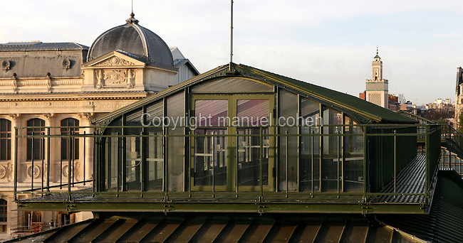 Glasshouses jardin des plantes paris manuel cohen for Plus grand jardin de paris