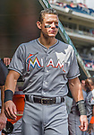 20 September 2015: Miami Marlins fielder Derek Dietrich walks the dugout prior to a game against the Washington Nationals at Nationals Park in Washington, DC. The Marlins fell to the Nationals 13-3 in the final game of their 4-game series. Mandatory Credit: Ed Wolfstein Photo *** RAW (NEF) Image File Available ***