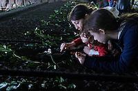 Roma, 24 Marzo 2013.Commemorazione per il 69° anniversario dell'eccidio delle Fosse Ardeatine,compiuto a Roma dalle truppe di occupazione della Germania nazista il 24 marzo 1944, furono uccisi, 335 civili e militari italiani. Tre sorellle  rendono omaggio ad un parente  rimasto ucciso alle Fosse Ardeatine