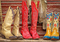 A Cowgirls Dream
