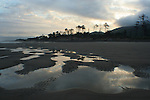 Tidepools at dawn at Cape Lookout State Park on the Oregon coast