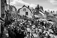 peloton up the iconic C&ocirc;te de Saint-Roch in Houffalize<br /> <br /> 103rd Li&egrave;ge-Bastogne-Li&egrave;ge 2017 (1.UWT)<br /> One Day Race: Li&egrave;ge &rsaquo; Ans (258km)