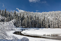 """Snowy Truckee River 4"" - Photograph of an iced over and snowy Truckee River in the winter."