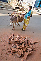 Young woman moving bricks with donkey. (Photo by Matt Considine - Images of Asia Collection)