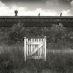 Abandoned factory and gate to nowhere. 1975.