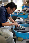 Craftsman Yorio Takahashi works on an ink stone made from local slate that was rescued from the debris at his temporary workshop in Ogatsu, Ishinomaki City, Japan on 9 Sept. 2012.  Photographer: Robert Gilhooly