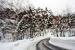 snow covered street with blurry trees lining the road
