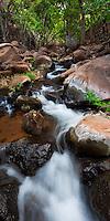 A stream runs down Miloli'i Canyon offering an oasis on the very dry Na Pali coast of Kauai.